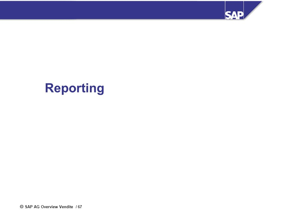 SAP AG Overview Vendite / 67 Reporting