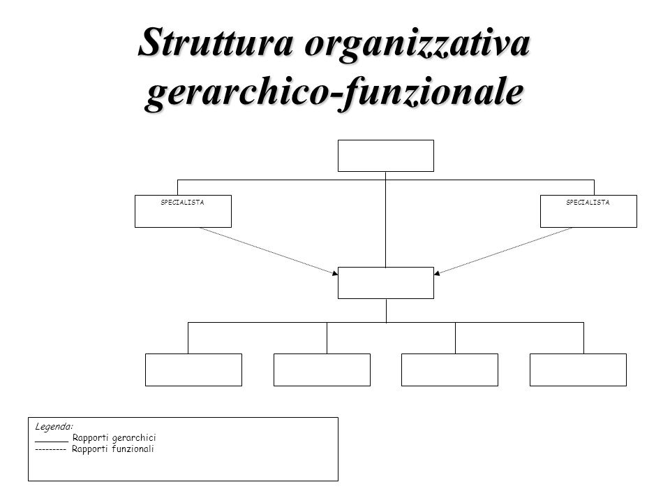 Struttura organizzativa gerarchico-funzionale SPECIALISTA Legenda: ______ Rapporti gerarchici --------- Rapporti funzionali