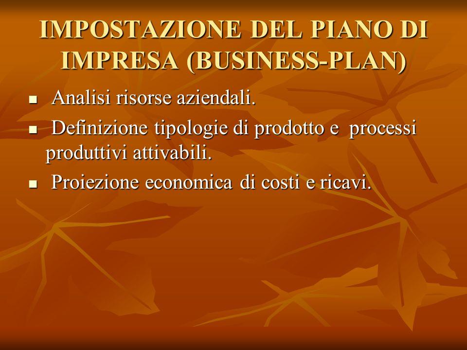 IMPOSTAZIONE DEL PIANO DI IMPRESA (BUSINESS-PLAN) Analisi risorse aziendali. Analisi risorse aziendali. Definizione tipologie di prodotto e processi p