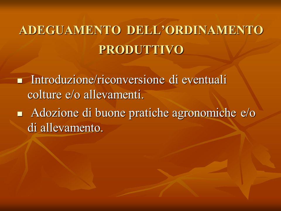 ADEGUAMENTO DELLORDINAMENTO PRODUTTIVO Introduzione/riconversione di eventuali colture e/o allevamenti. Introduzione/riconversione di eventuali coltur
