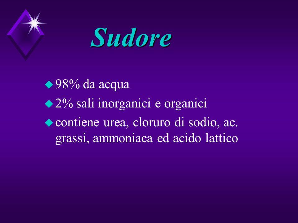 Sudore u 98% da acqua u 2% sali inorganici e organici u contiene urea, cloruro di sodio, ac. grassi, ammoniaca ed acido lattico