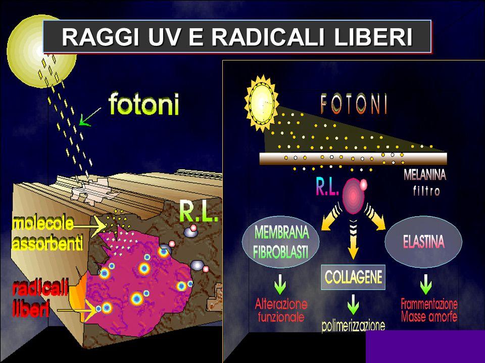 RAGGI UV E RADICALI LIBERI