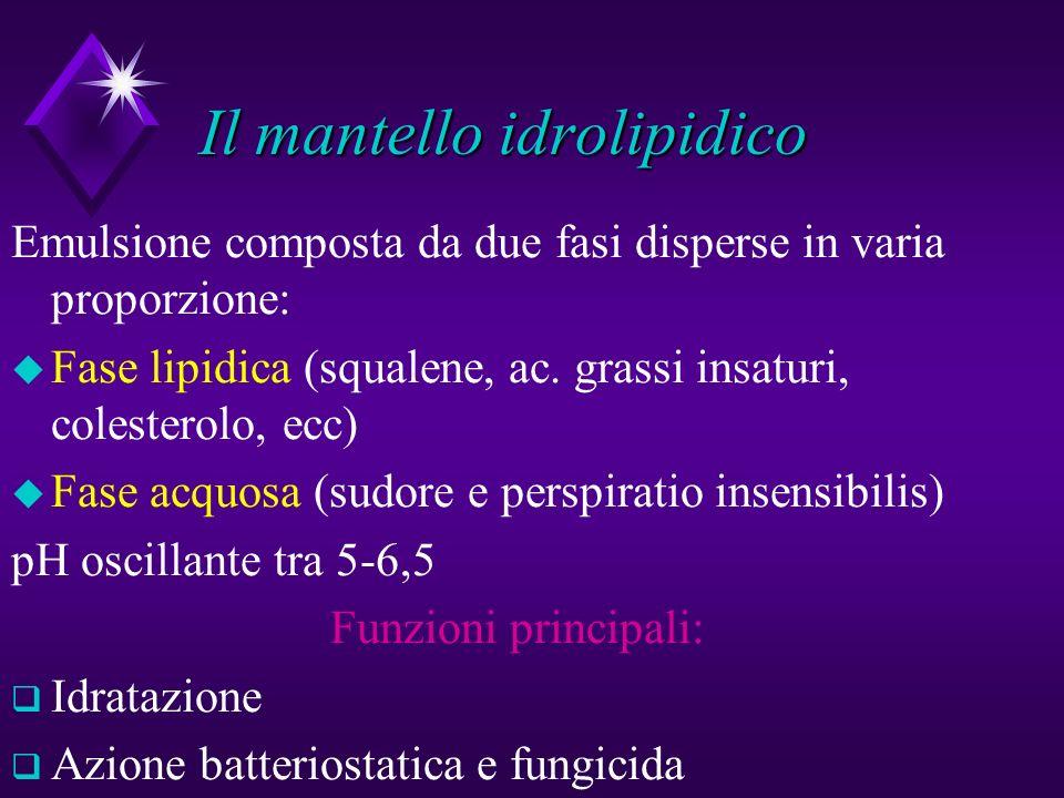 Il mantello idrolipidico Emulsione composta da due fasi disperse in varia proporzione: u Fase lipidica (squalene, ac. grassi insaturi, colesterolo, ec