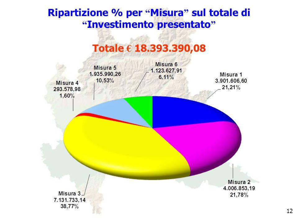 12 Ripartizione % per Misura sul totale di Investimento presentato Totale 18.393.390,08