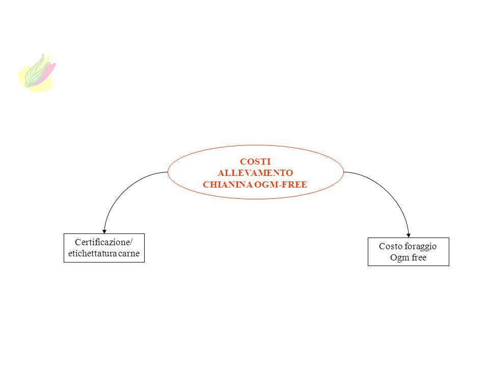 COSTI ALLEVAMENTO CHIANINA OGM-FREE Certificazione/ etichettatura carne Costo foraggio Ogm free