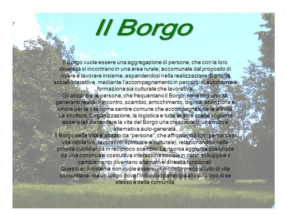 Il Borgo vuole essere una aggregazione di persone, che con la loro diversità si incontrano in una area rurale; accomunate dal proposito di vivere e lavorare insieme, espandendosi nella realizzazione di attività sociali interattive, mediante laccompagnamento in percorsi di autonomia e formazione sia culturale che lavorativa.