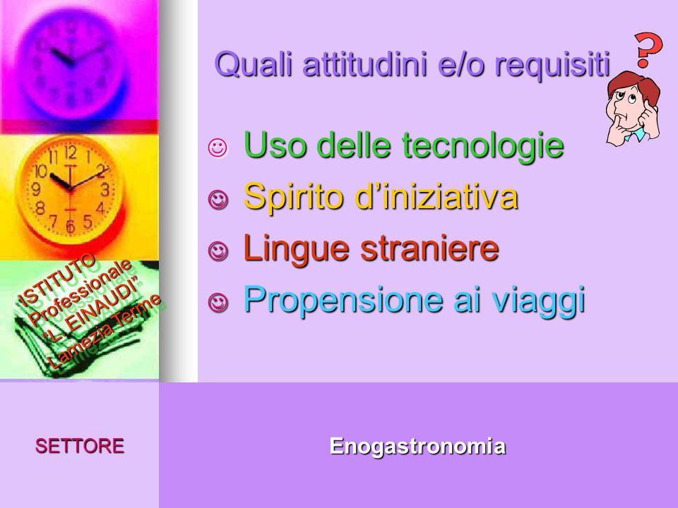 Quali attitudini e/o requisiti EnogastronomiaSETTORE ISTITUTO Professionale L. EINAUDI Lamezia Terme Uso delle tecnologie Uso delle tecnologie Spirito