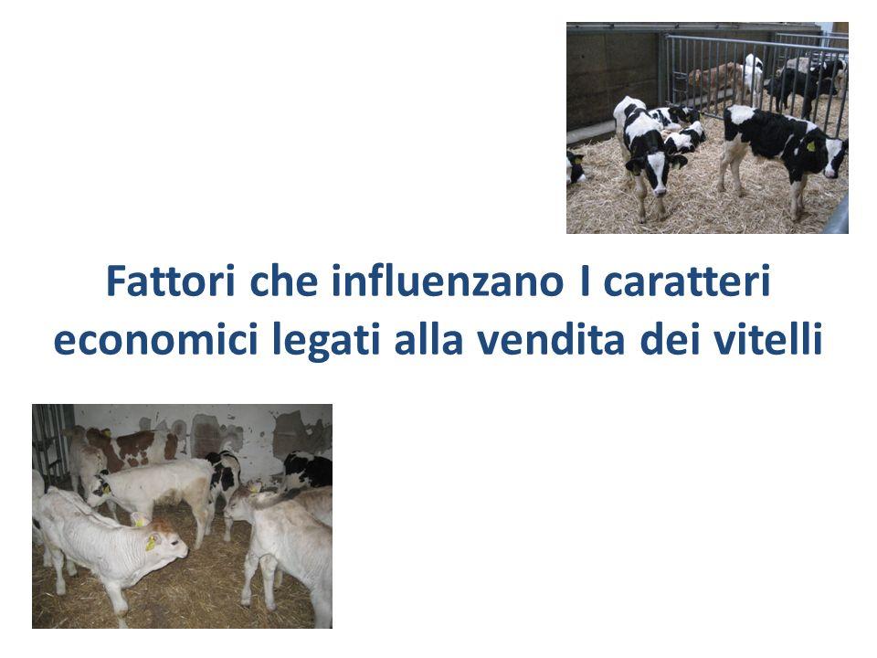 Materiali e Metodi Archivio dati della federazione provinciale allevatori Circa 40,000 vitelli venduti da giugno 2002 a maggio 2011 Caratteri analizzati: Età del vitello(media 24d±9 d) Peso-vivo (media 64±10 kg) prezzo(media 3.63±1.87/kg) Valore(media 240±145)