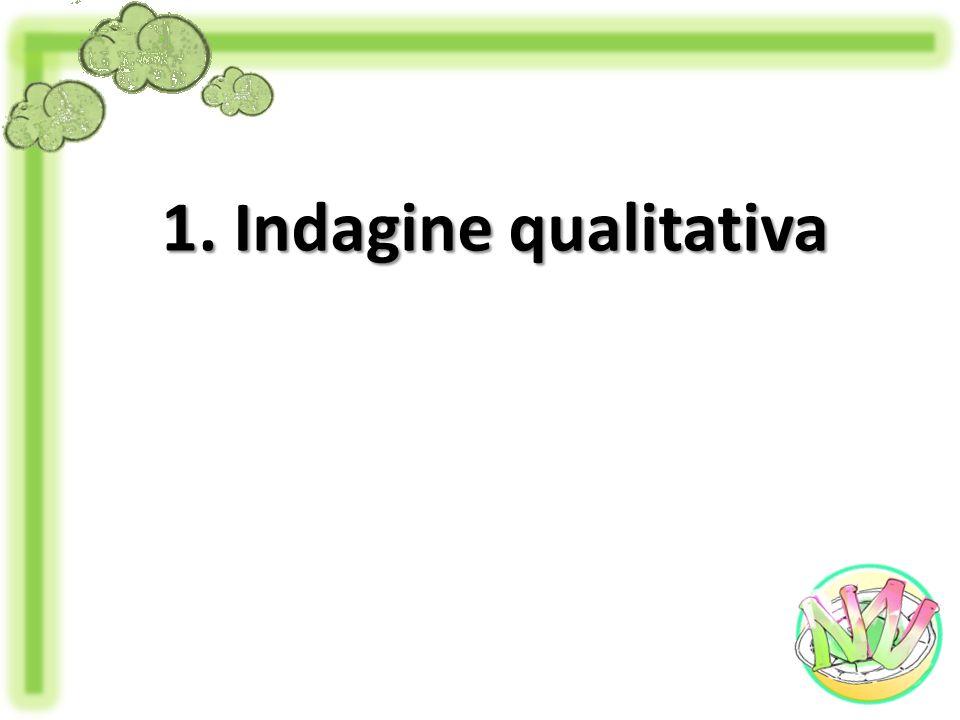 1. Indagine qualitativa