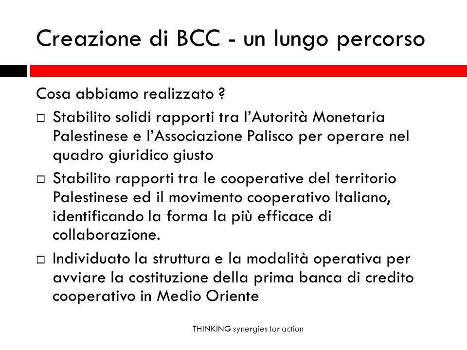 Creazione di BCC - un lungo percorso THINKING synergies for action Cosa abbiamo realizzato .