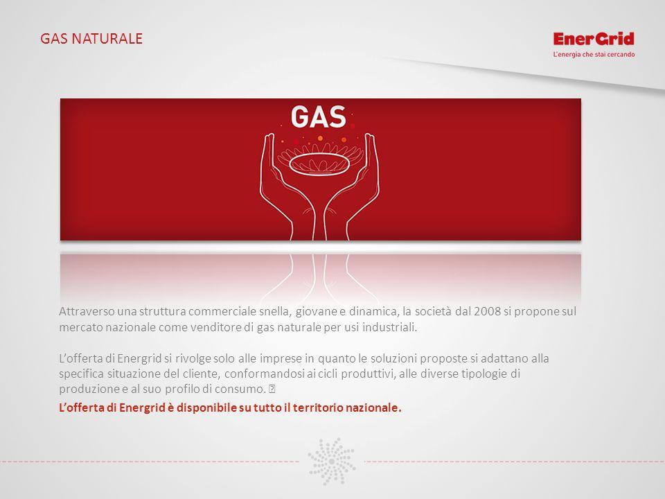 GAS NATURALE Attraverso una struttura commerciale snella, giovane e dinamica, la società dal 2008 si propone sul mercato nazionale come venditore di g