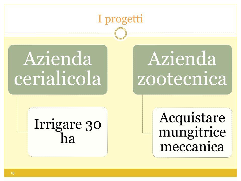 I progetti Azienda cerialicola Irrigare 30 ha Azienda zootecnica Acquistare mungitrice meccanica 19
