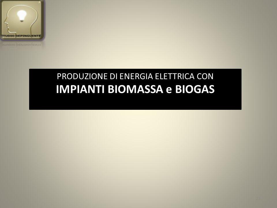 PRODUZIONE DI ENERGIA ELETTRICA CON IMPIANTI BIOMASSA e BIOGAS 23