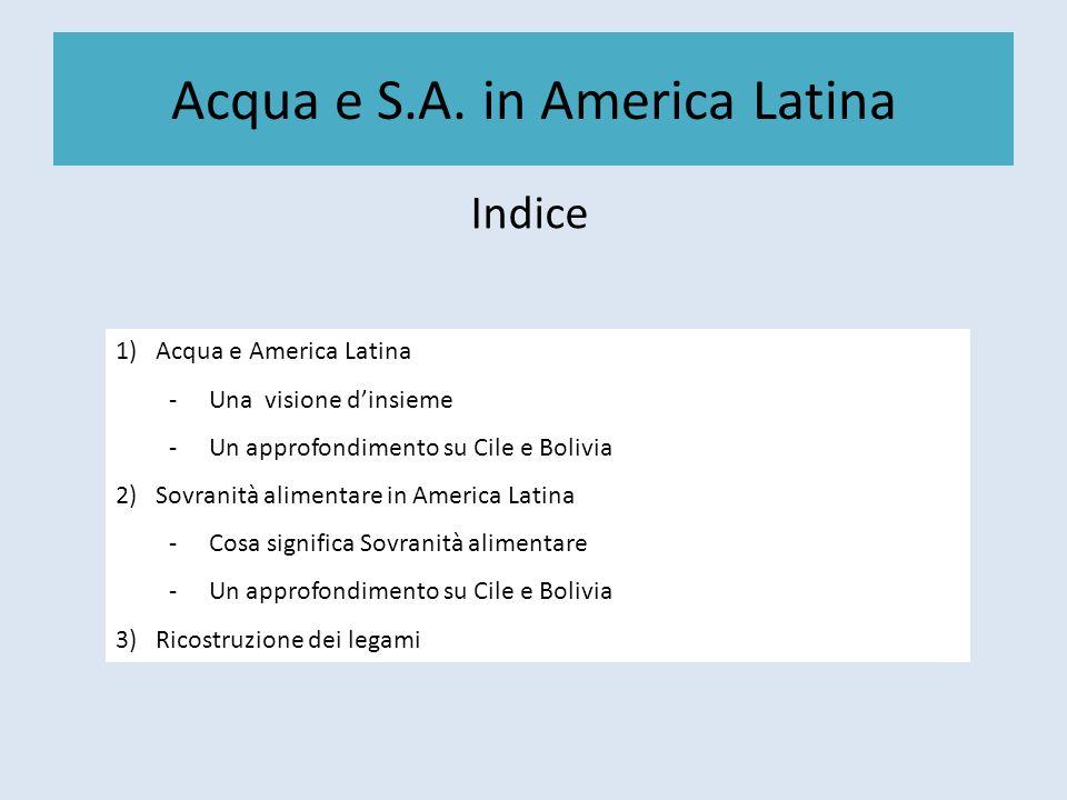 Acqua e S.A. in America Latina Indice 1)Acqua e America Latina -Una visione dinsieme -Un approfondimento su Cile e Bolivia 2)Sovranità alimentare in A
