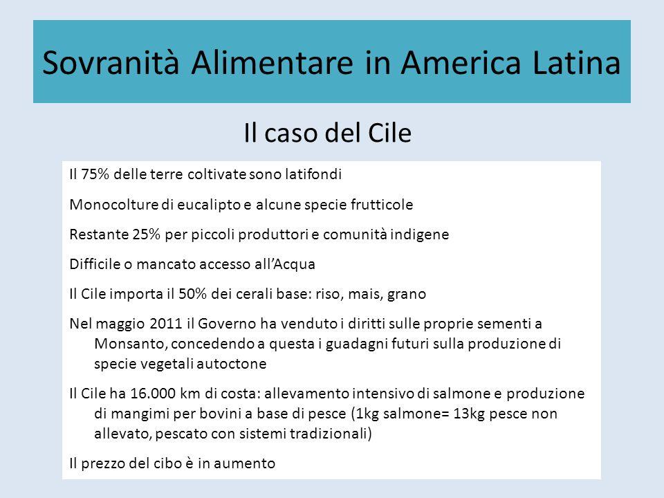 Sovranità Alimentare in America Latina Il caso del Cile Il 75% delle terre coltivate sono latifondi Monocolture di eucalipto e alcune specie frutticol