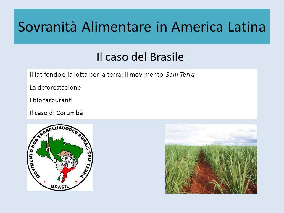 Sovranità Alimentare in America Latina Il caso del Brasile Il latifondo e la lotta per la terra: il movimento Sem Terra La deforestazione I biocarbura
