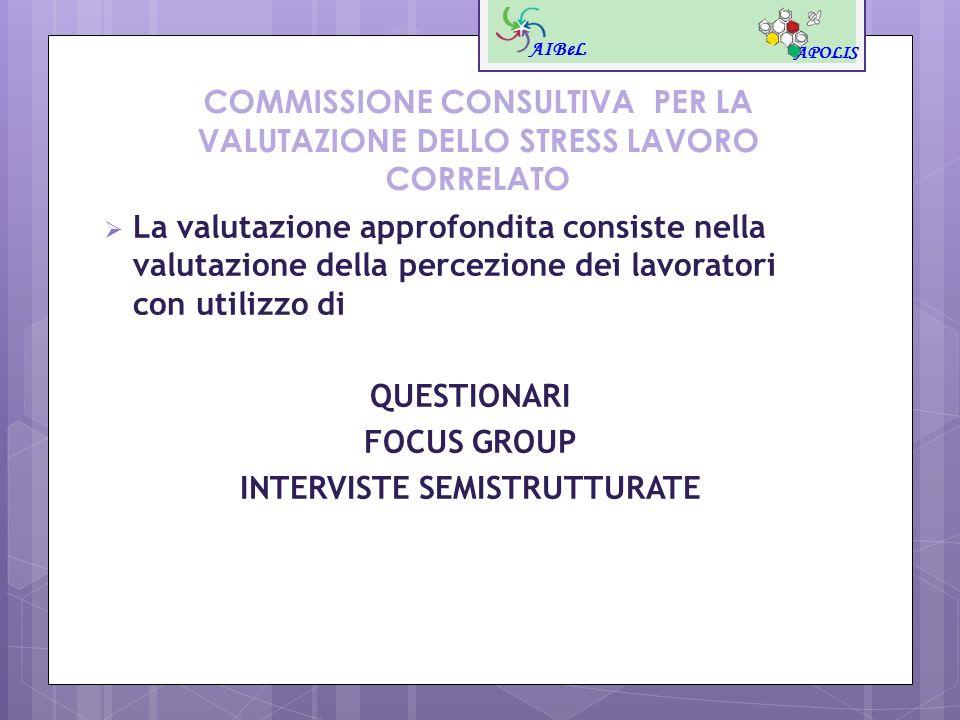 COMMISSIONE CONSULTIVA PER LA VALUTAZIONE DELLO STRESS LAVORO CORRELATO La valutazione approfondita consiste nella valutazione della percezione dei la
