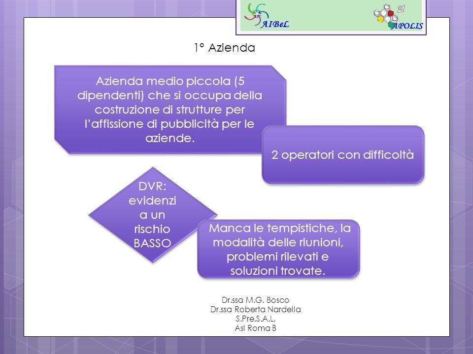 AIBeL APOLIS Dr.ssa M.G. Bosco Dr.ssa Roberta Nardella S.Pre.S.A.L. Asl Roma B 1° Azienda Azienda medio piccola (5 dipendenti) che si occupa della cos