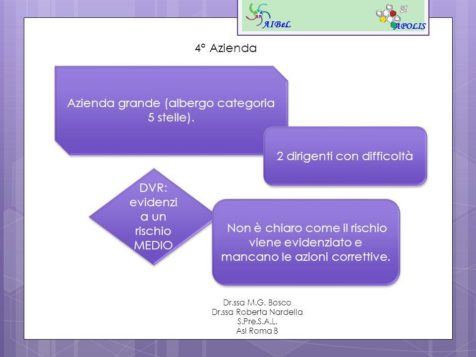 AIBeL APOLIS Dr.ssa M.G. Bosco Dr.ssa Roberta Nardella S.Pre.S.A.L. Asl Roma B 4° Azienda Azienda grande (albergo categoria 5 stelle). 2 dirigenti con