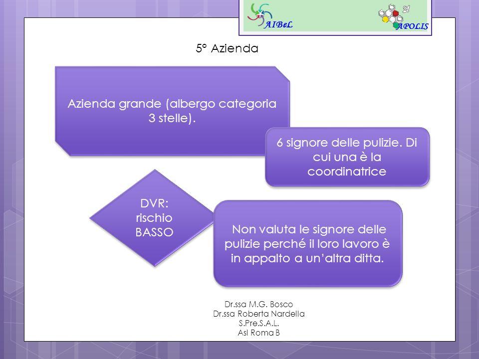 AIBeL APOLIS Dr.ssa M.G. Bosco Dr.ssa Roberta Nardella S.Pre.S.A.L. Asl Roma B 5° Azienda Azienda grande (albergo categoria 3 stelle). 6 signore delle