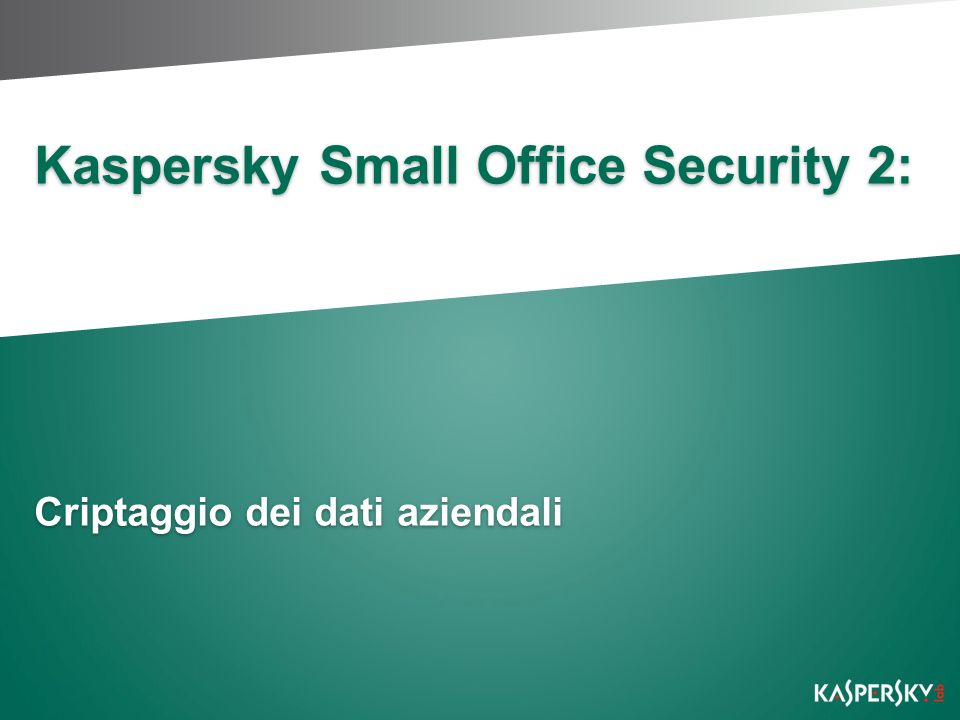 Kaspersky Small Office Security 2: Criptaggio dei dati aziendali