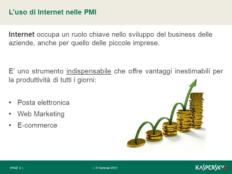 | 31 Gennaio 2011PAGE 3 | Luso di Internet nelle PMI Internet occupa un ruolo chiave nello sviluppo del business delle aziende, anche per quello delle piccole imprese.
