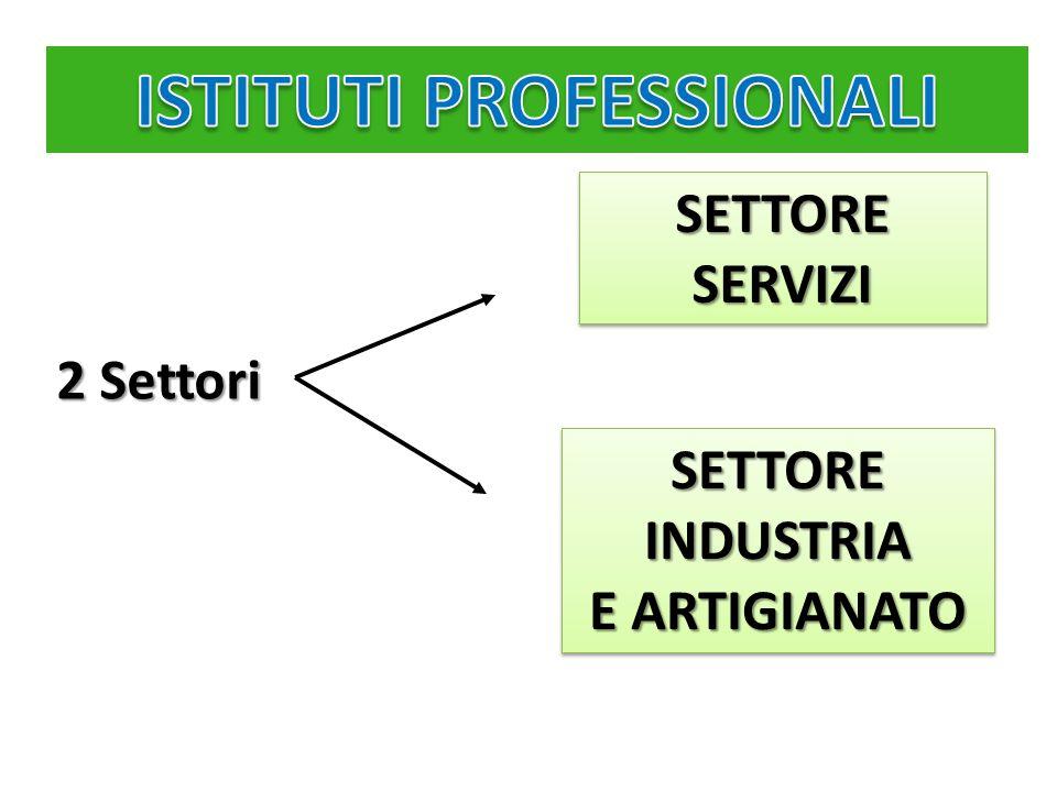 SETTORE SERVIZI SETTORE INDUSTRIA E ARTIGIANATO 2 Settori