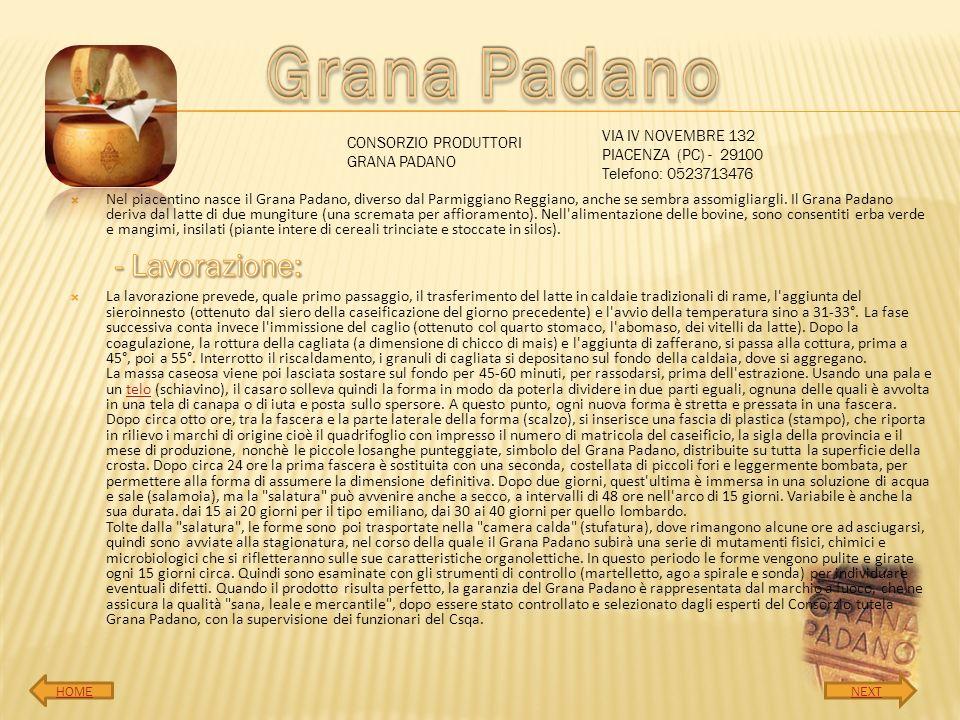 Nel piacentino nasce il Grana Padano, diverso dal Parmiggiano Reggiano, anche se sembra assomigliargli. Il Grana Padano deriva dal latte di due mungit