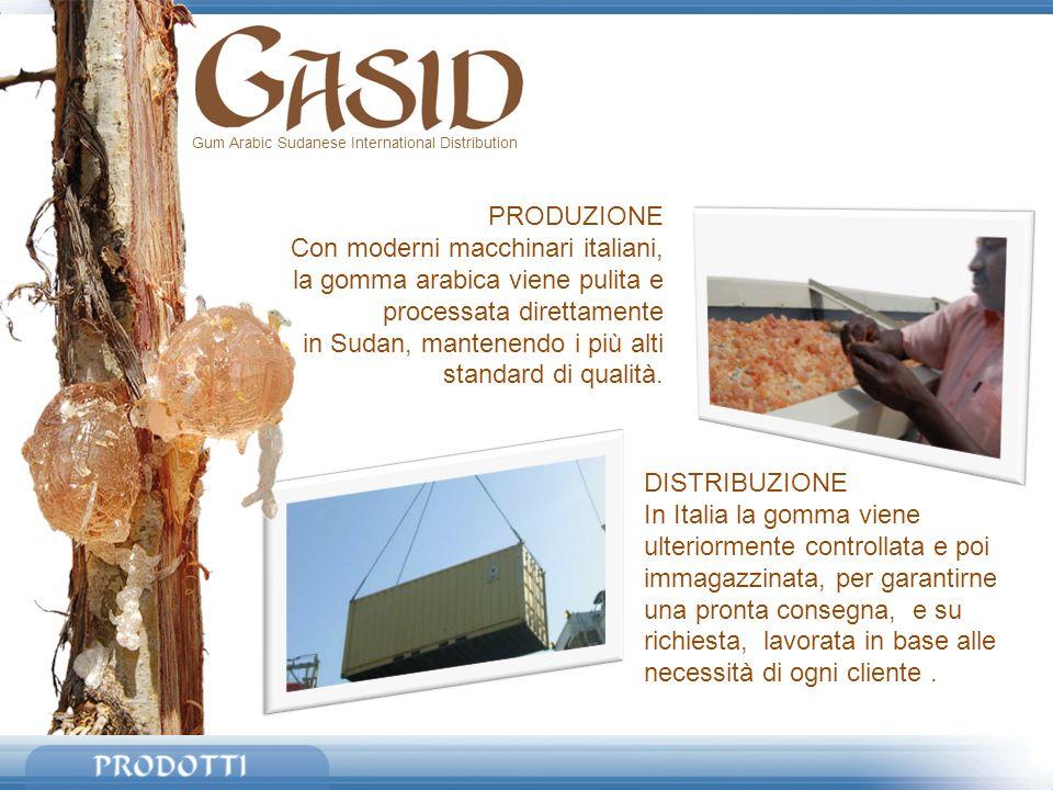 Gum Arabic Sudanese International Distribution PRODUZIONE Con moderni macchinari italiani, la gomma arabica viene pulita e processata direttamente in