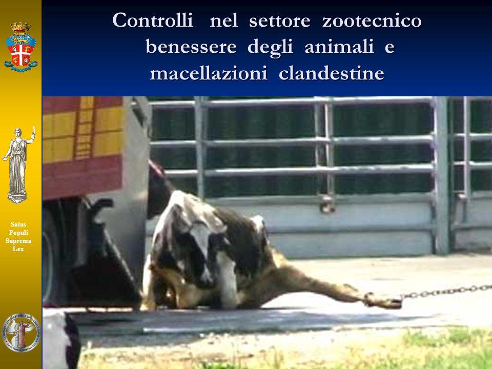 Controlli nel settore zootecnico benessere degli animali e macellazioni clandestine Salus Populi Suprema Lex