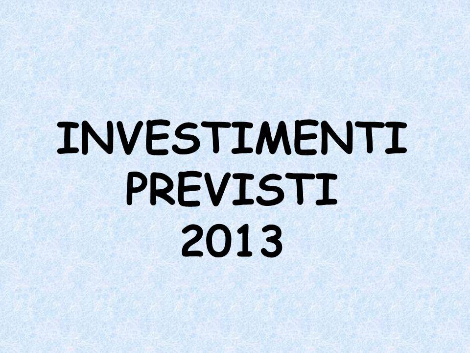 INVESTIMENTI PREVISTI 2013