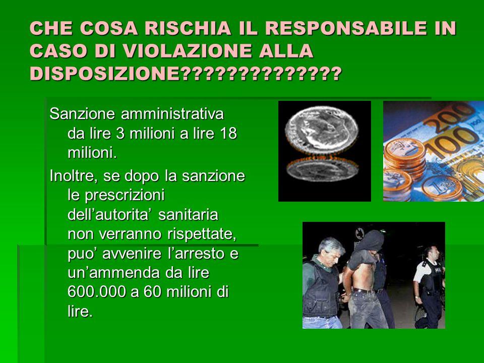 CHE COSA RISCHIA IL RESPONSABILE IN CASO DI VIOLAZIONE ALLA DISPOSIZIONE?????????????.
