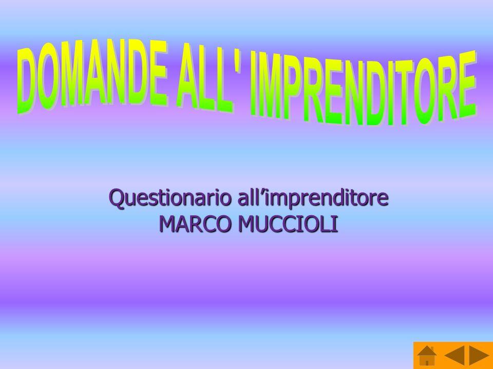 Questionario allimprenditore MARCO MUCCIOLI