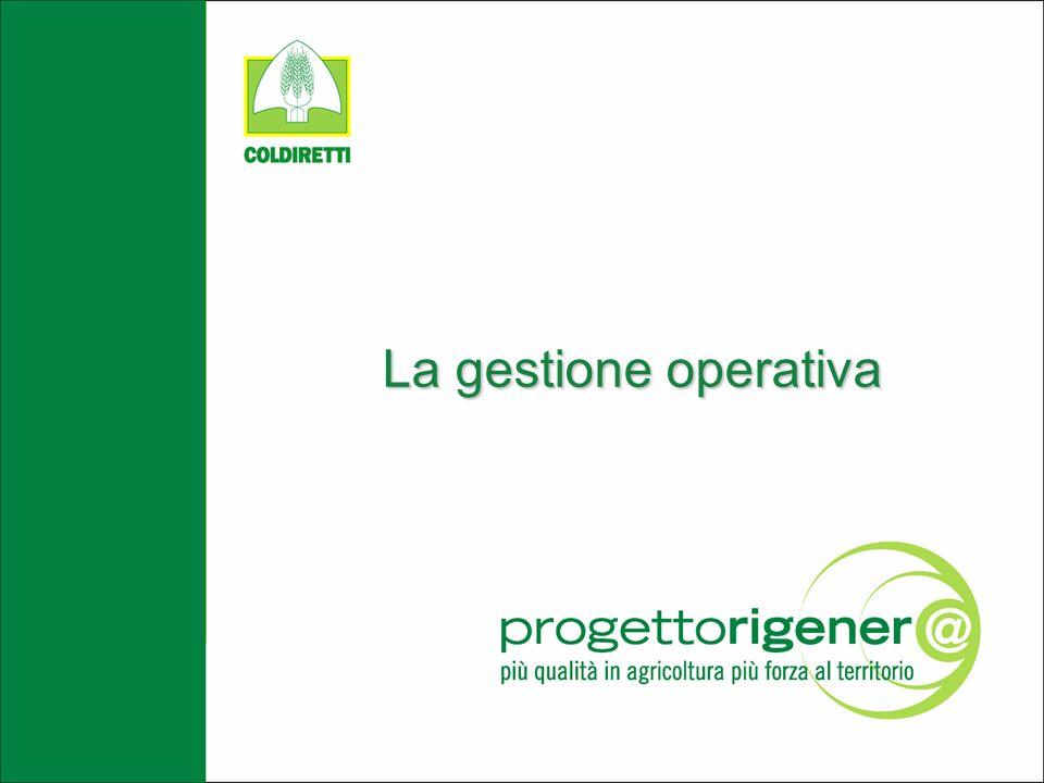 La gestione operativa
