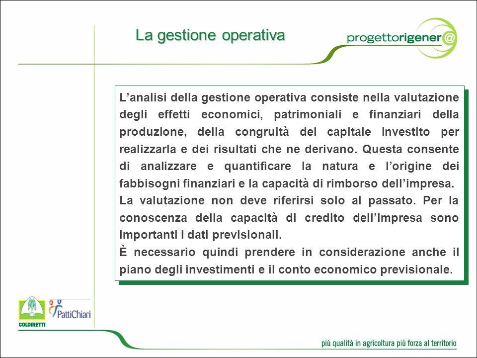 Lanalisi della gestione operativa consiste nella valutazione degli effetti economici, patrimoniali e finanziari della produzione, della congruità del capitale investito per realizzarla e dei risultati che ne derivano.