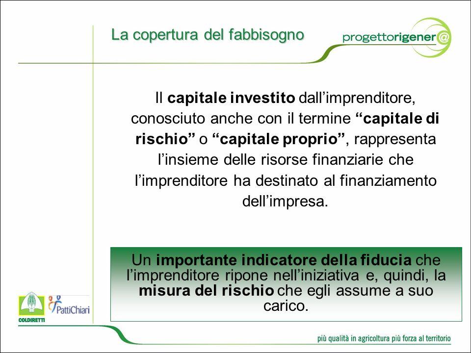 Il capitale investito dallimprenditore, conosciuto anche con il termine capitale di rischio o capitale proprio, rappresenta linsieme delle risorse finanziarie che limprenditore ha destinato al finanziamento dellimpresa.
