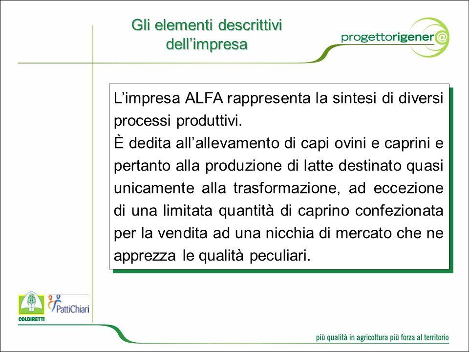Gli elementi descrittivi dellimpresa Limpresa ALFA rappresenta la sintesi di diversi processi produttivi.