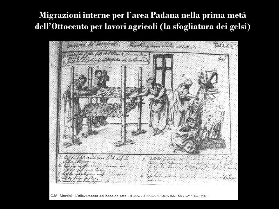 Migrazioni interne per larea Padana nella prima metà dellOttocento per lavori agricoli (la sfogliatura dei gelsi)