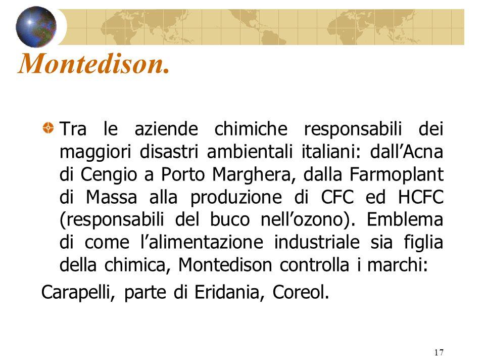 17 Montedison. Tra le aziende chimiche responsabili dei maggiori disastri ambientali italiani: dallAcna di Cengio a Porto Marghera, dalla Farmoplant d