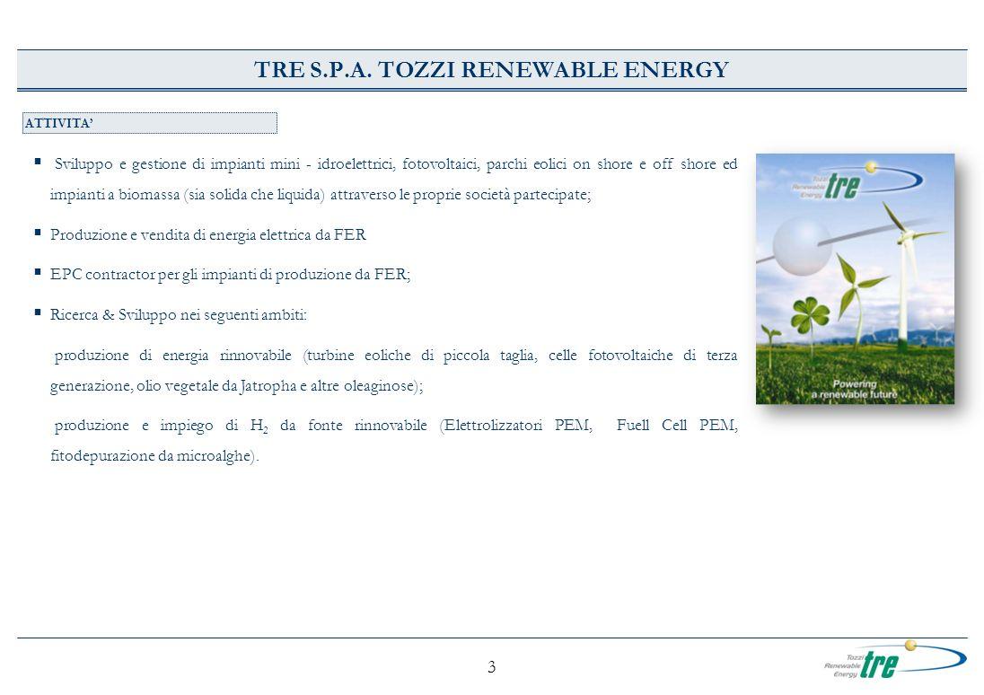 3 TRE S.P.A. TOZZI RENEWABLE ENERGY ATTIVITA Sviluppo e gestione di impianti mini - idroelettrici, fotovoltaici, parchi eolici on shore e off shore ed