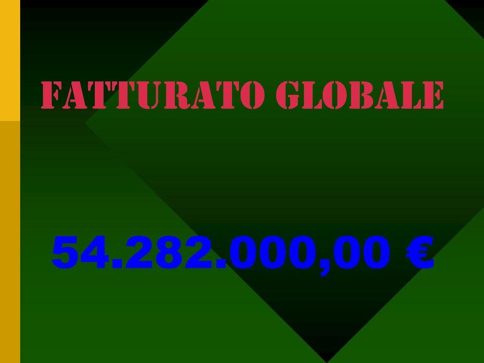 Puglia Campania Basilicata Sicilia Calabria COMPOSIZIONE ORGANICO. Ufficio commerciale 5 addetti. Agenti sul territorio: 25