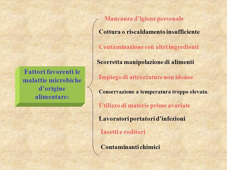 POSSIBILI FONTI DI CONTAMINAZIONE MICROBICA Contaminazione endogena: è presente nel tessuto interno dellalimento, soprattutto nei tessuti delle carni