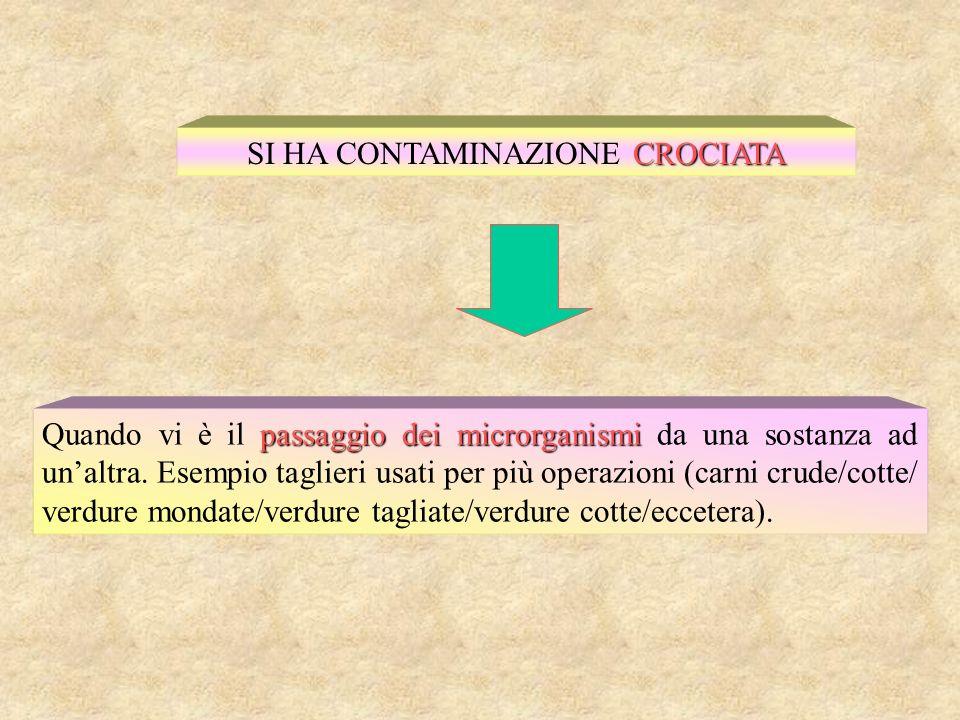 SECONDARIA SI HA CONTAMINAZIONE SECONDARIA Se si verifica in fase di lavorazione lavorazione (ambiente – personale) o di conservazione del prodotto.