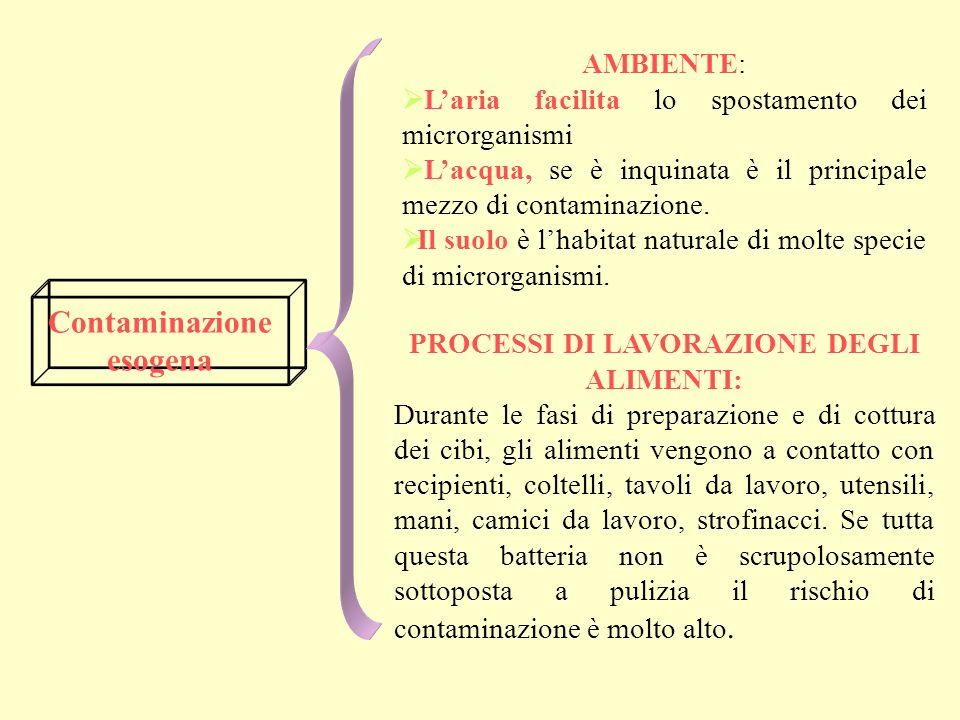Campo dapplicazione delligiene degli alimenti Secondo larticolo 2 del D. Ls. 26 maggio 1997 n 155 tutte le misure necessarie per garantire la sicurezz