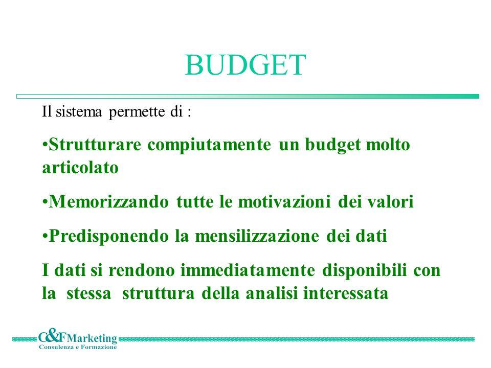 BUDGET Il sistema permette di : Strutturare compiutamente un budget molto articolato Memorizzando tutte le motivazioni dei valori Predisponendo la mensilizzazione dei dati I dati si rendono immediatamente disponibili con la stessa struttura della analisi interessata