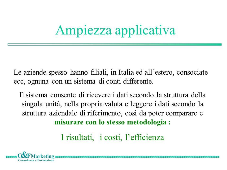 Ampiezza applicativa Le aziende spesso hanno filiali, in Italia ed allestero, consociate ecc, ognuna con un sistema di conti differente.
