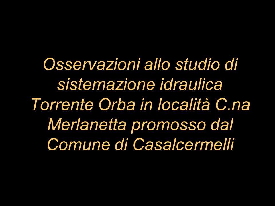 Osservazioni allo studio di sistemazione idraulica Torrente Orba in località C.na Merlanetta promosso dal Comune di Casalcermelli