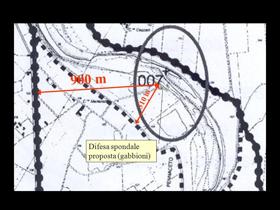 Difesa spondale proposta (gabbioni) 900 m 310 m