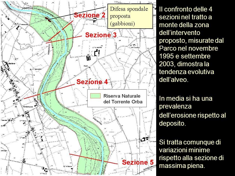 Il confronto delle 4 sezioni nel tratto a monte della zona dellintervento proposto, misurate dal Parco nel novembre 1995 e settembre 2003, dimostra la