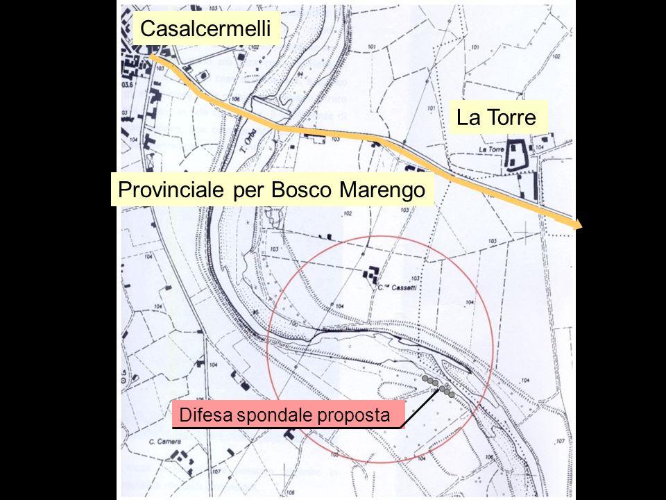 Inquadramento territoriale La Torre Provinciale per Bosco Marengo Casalcermelli Difesa spondale proposta